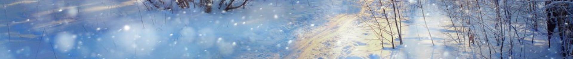 t Day Immune Boosting Winter Wellness Plan
