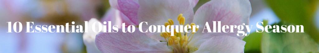 10 Essential Oils to Conquer Allergies
