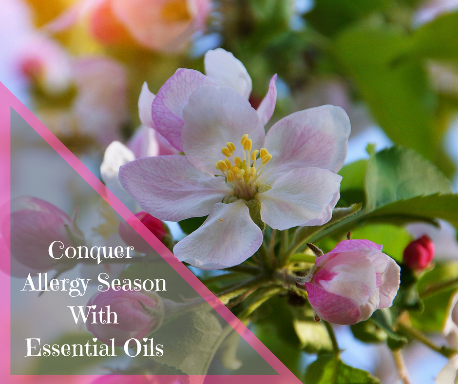 Conquer Allergy Season with Essential Oils