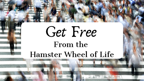 get free from the hamster wheel of life