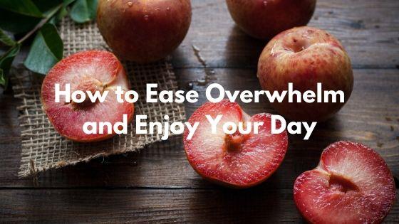 Blog - Ease Overwhelm